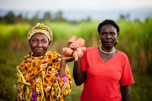 Gender and Land Country Profile   Kenya