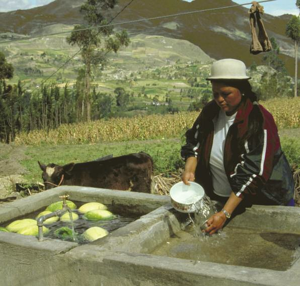 Gender and water securing water for improved rural livelihoods  The multiple uses system approach