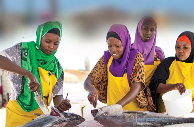 Local business, Local Peace   the peace building potential of domestic private sector, somalia