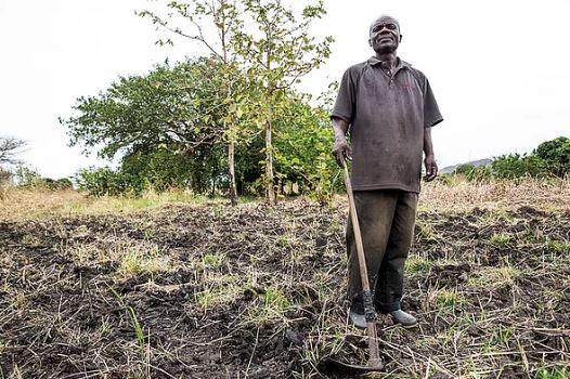 The strategic instramentalization of land tenure in State building  The case of Juba, South Sudan