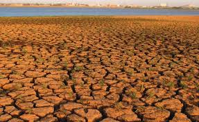 Agricultural production and trade under climate change in Sudan