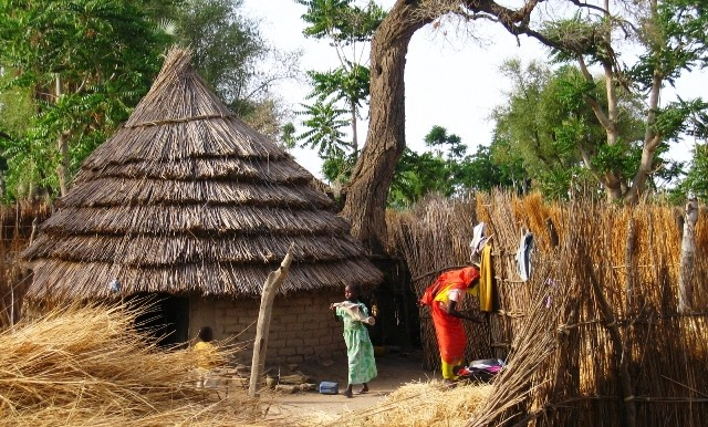 Impact of land use change on the livelihoods of rural communities, South Dafur State, Sudan
