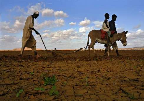 Land and the Sudanese transition to peace