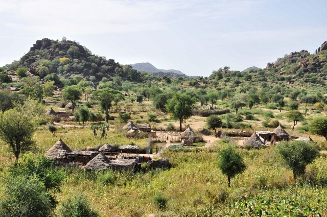 A bitter harvest and grounds for reform   the Nuba mountains, conflicted land and transitional Sudan