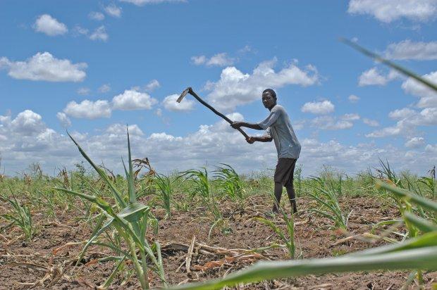 Conflict in Uganda's Land Tenure System
