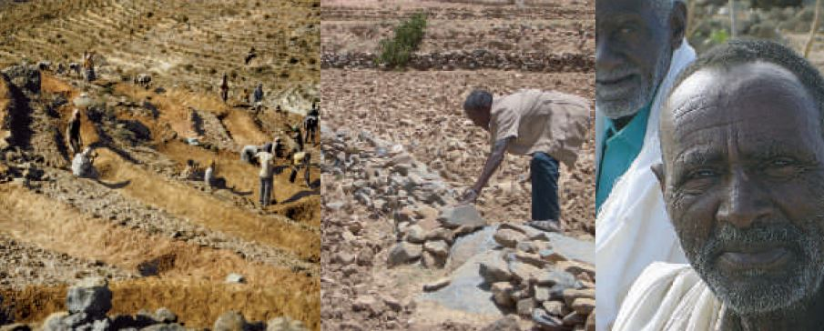 Land Management in the Central Highlands of Eritrea