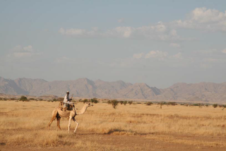 Climate Change Adaptation Programme in Water and Agriculture in Anseba Region, Eritrea