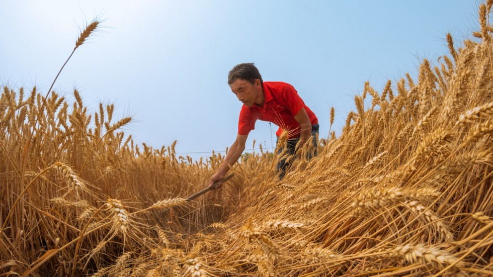 An Overview of Chinese Agricultural and Rural Engagement in Ethiopia