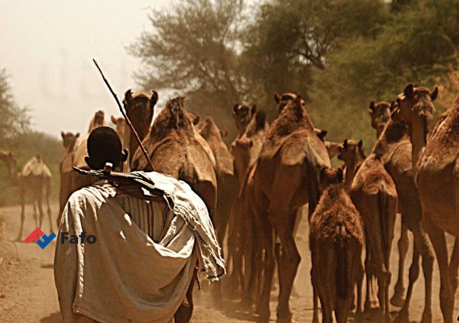 Climate change to conflict   Lessons from Southern Ethiopia and Northern Kenya