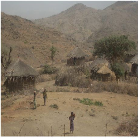 Female Headed Households and Their Livelihood in Bati Wäräda, South Wollo Practices and Resistance