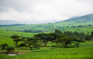 Gender and Land Country Profile   Ethiopia
