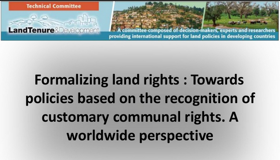 Formalising Land Rights in Developing Countries: Moving from Past Controversies to Future Strategies