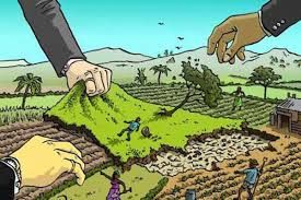 Land Policy Development in East Africa: A Survey of Recent Trends