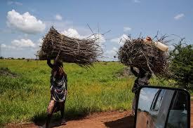 Sudan Land Governance and pastoralism in the Sudan