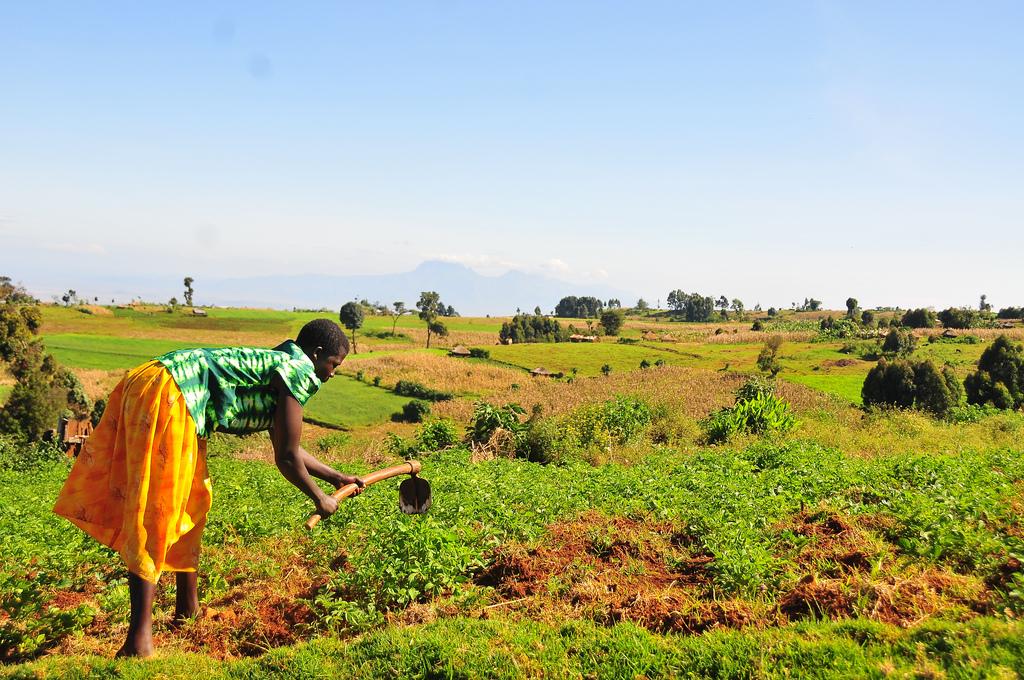 Uganda Land Goverance