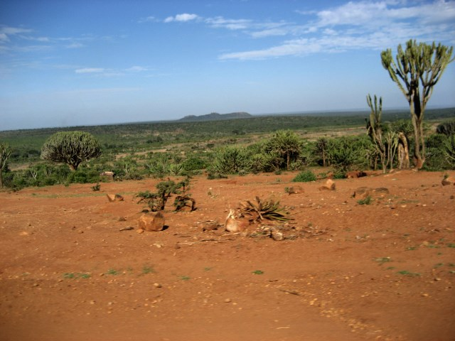 Cooperation and Conflicts over Access and Use of Natural Resources in the Arid and Semi Arid Lands (ASALs) of Kenya