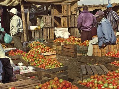 Food Security in Kenya   Main Paper 2009