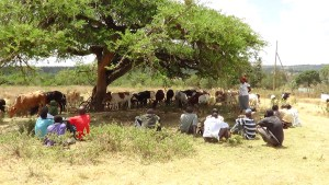 A holistic approach to natural resource conflict  The case of Laikipia County, Kenya