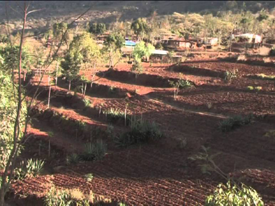Land tenure and farm level soil conservation in semi arid areas, Kenya