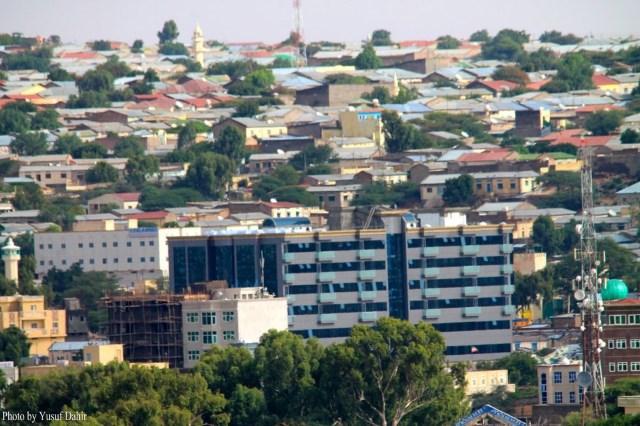 Hargeisa Urban Household Economy Assessment