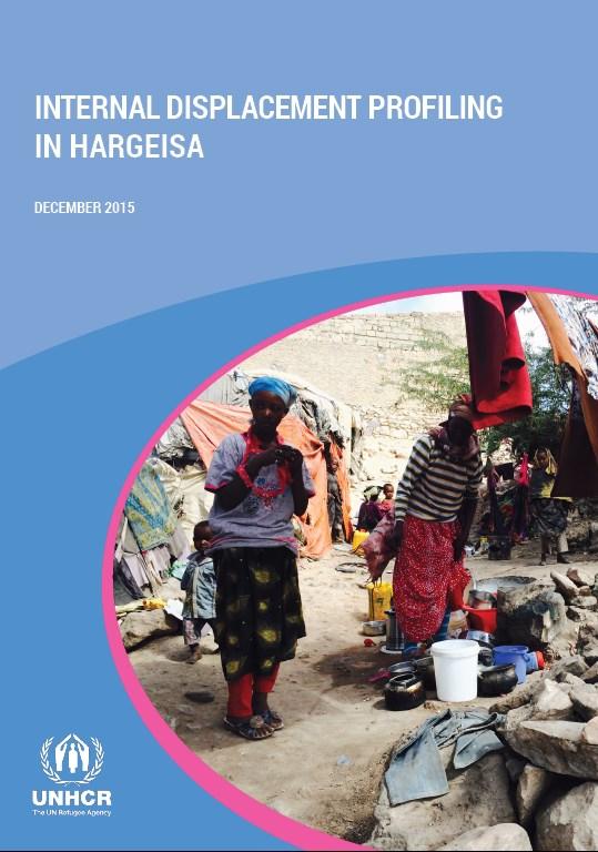 Internal Displacement Profiling in Hargeisa
