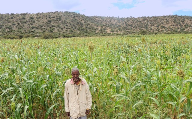 Land Tenure in Somalia A Potential Foundation for Security and Prosperity