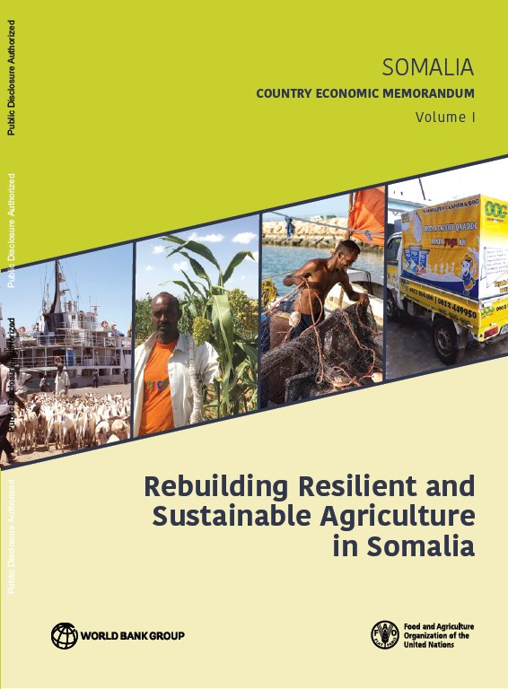Building Resilient and sustainable Agriculture in Somalia