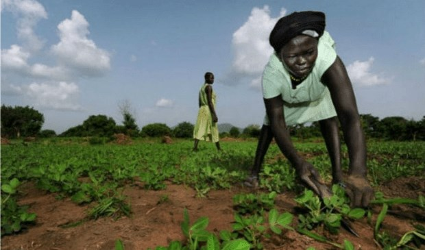 Assessing Agricultural Potential in South Sudan – A Spatial Analysis Method