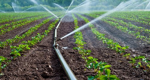 Assessment of the irrigation potential in South Sudan