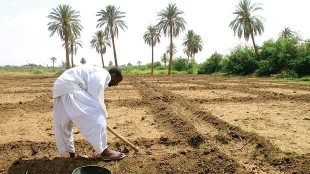 The agricultural potential of Sudan