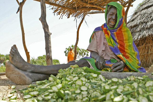 Land cover as a base for food security in Sudan