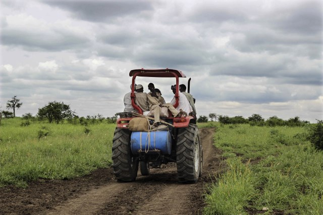 Drivers and actors in large scale farmland acquisitions in Sudan