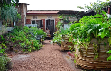 Gender and Access to Land for Urban Agriculture in Kampala, Uganda