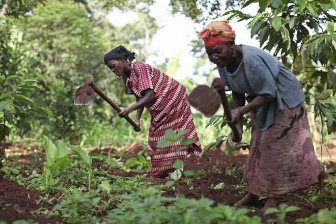 Decentralised land administration and Women's Land rights in Uganda