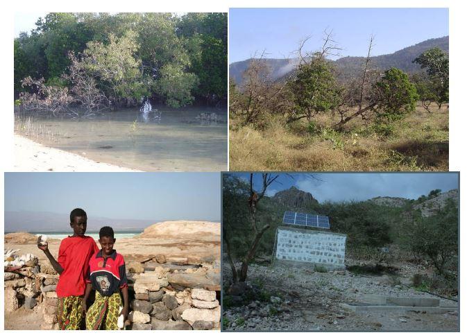 Plan d'Action National pour le Développement des Capacités en matière de Gestion Durable de l'Environnement en République de Djibouti (2009 2018)