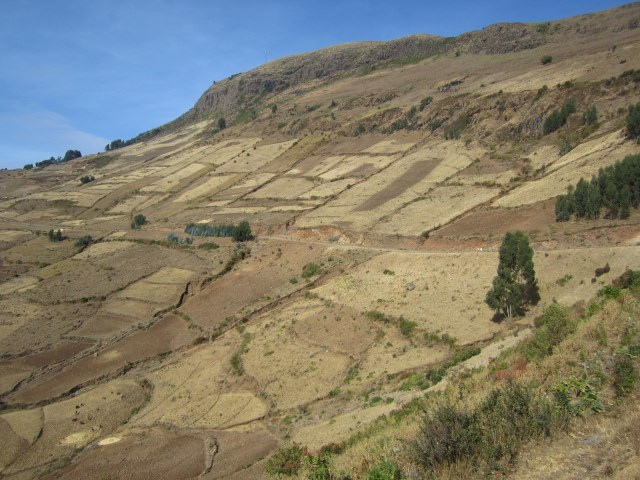 Communal Land Utilization in the Highlands of Northern Ethiopia  Evidence of Transaction Costs