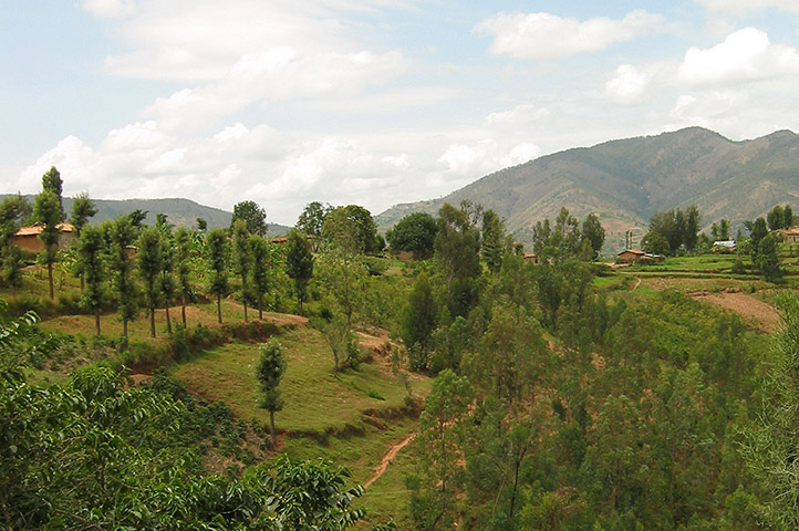 Contract duration under incomplete land ownership rights   empirical evidence from rural Ethiopia