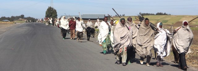 A review on Causes and Consequences of Rural  Urban Migration in Ethiopia