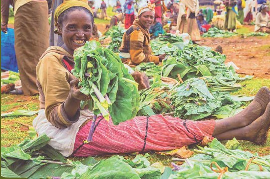 Dilemmas of urban development  a survey of Addis Ababa residents' opinions on urban agriculture