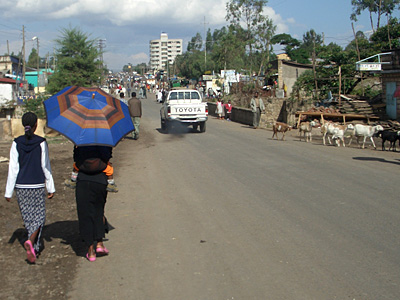 Assessing Urban Land Lease Policy Implementation in Ethiopia  The Case of Ambo Town