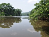 African Conflicts and Conflicts Drivers  Uganda, Congo and the Mano River